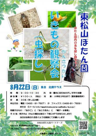 主催イベント:🐞いきもの観察会(虫探し)🐞の画像