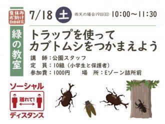 主催イベント:緑の教室 トラップを使ってカブトムシをつかまえようの画像