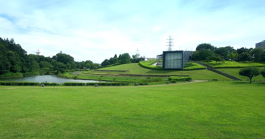 公園の写真2