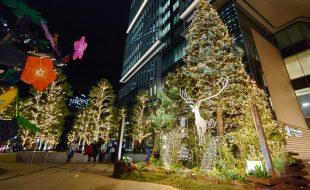 東京ガーデンテラス紀尾井町 KIOI Forest TREE