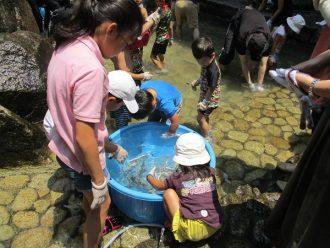 主催イベント:家庭の日応援プロジェクト7月 ~小川であそぼう!!~の画像