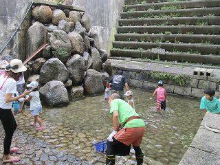 主催イベント:家庭の日応援プロジェクト7月(小川で遊ぼう!マスつかみも体験できるよ!)の画像